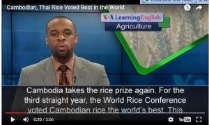 Một bản tin tiếng Anh về nông nghiệp trên