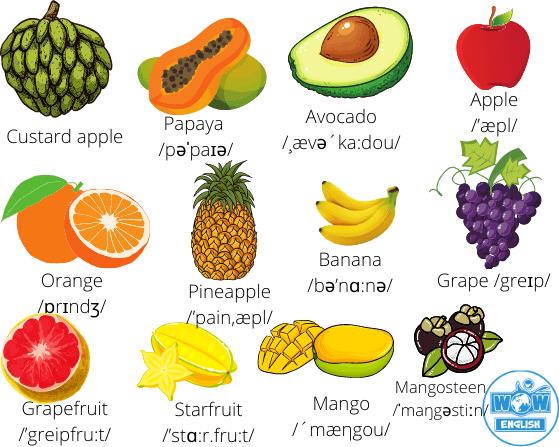 Tên các loại quả trong Tiếng Anh 1