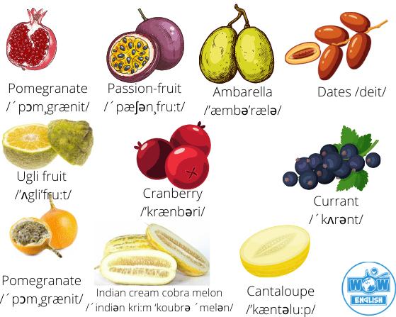 Các loại hoa quả trong Tiếng Anh 4