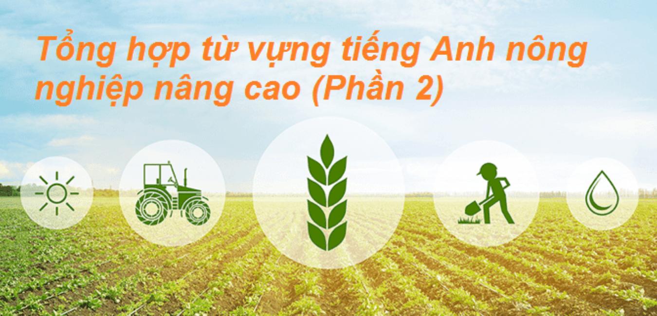 Advanced Agriculture Vocabulary - Tổng hợp từ vựng tiếng Anh nông nghiệp nâng cao (Phần 2)