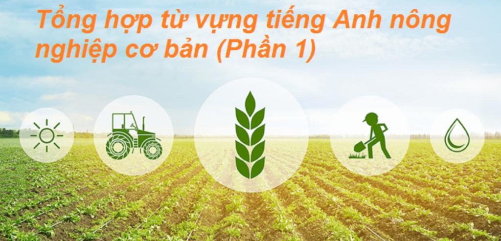 Basic Agriculture Vocabulary – Tổng hợp từ vựng tiếng Anh nông nghiệp cơ bản (Phần 1)