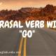 PHRASAL VERB VỚI GO