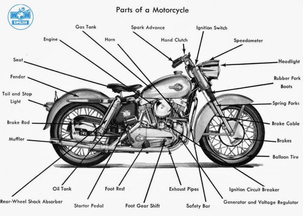 Từ vựng tiếng Anh về bộ phận xe máy