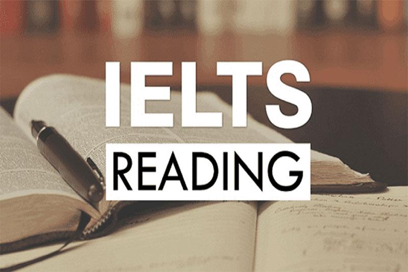 cách tăng điểm Reading IELTS